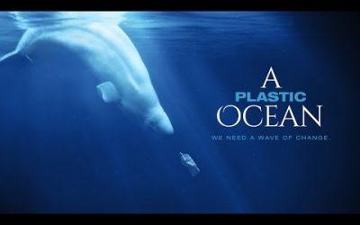 Un océano de plástico